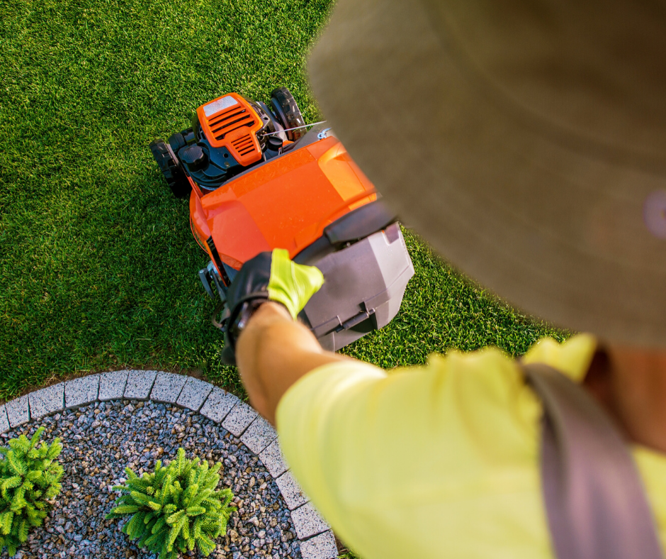 Is Your Lawn Dying?: Lawn Service Tips to Save Your Grass