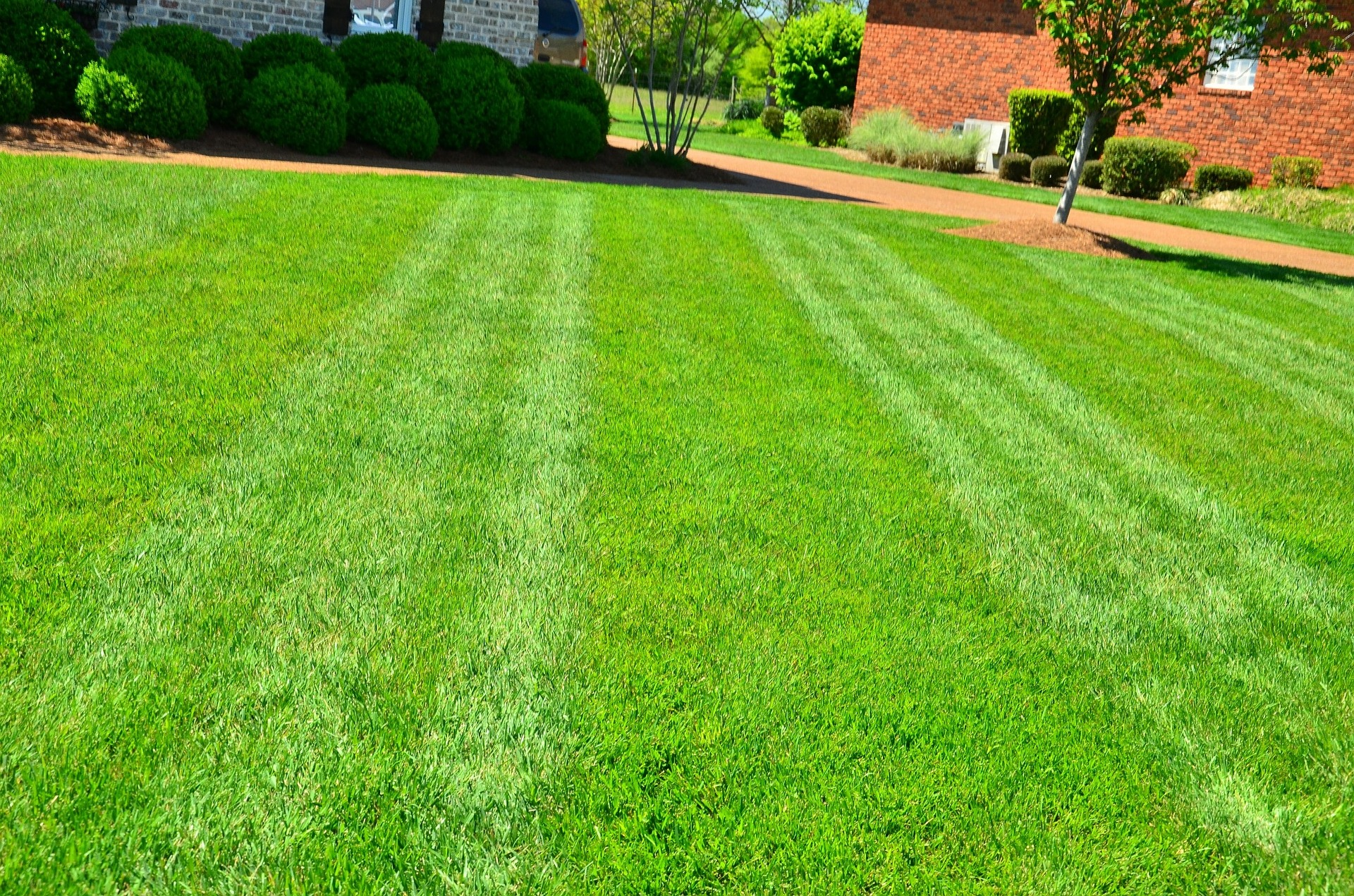 Spring Lawn Maintenance Made Simple