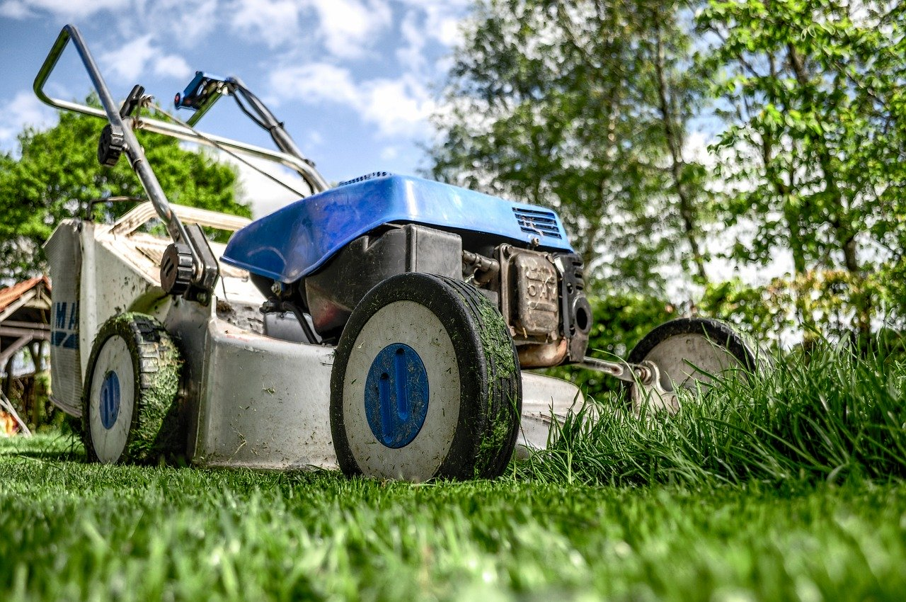 Top 4 Lawn Maintenance Tips for 2020